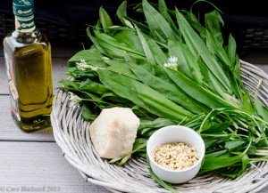Wild Garlic leaves - Ail L'Ours